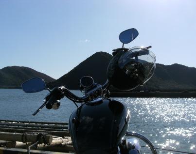 20111204-hinase.JPG