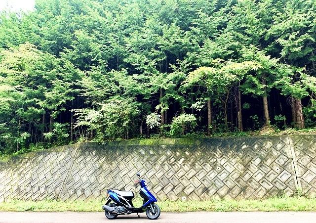 IMG_8938-photo-full.jpg