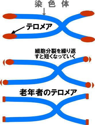 image202012.jpg