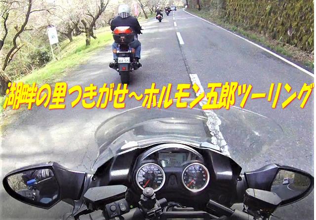 imagetop.png